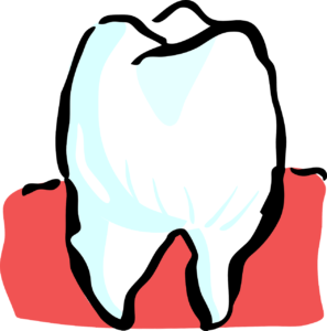 You've had a Root Canal Treatment – Now What?